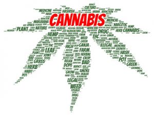 Cannabis word cloud shape
